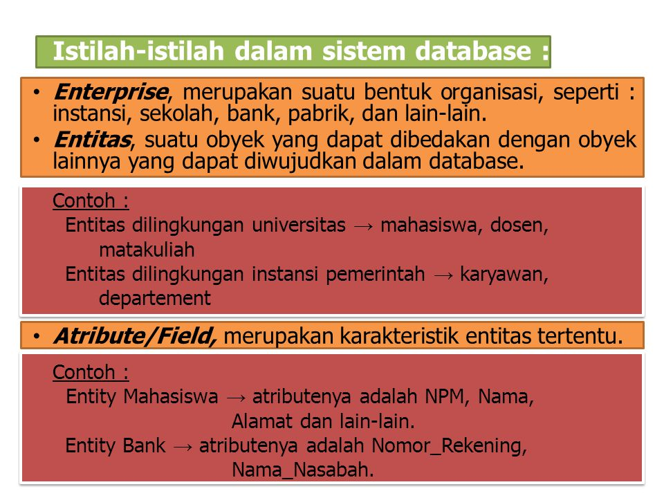 Istilah-istilah dalam sistem database :