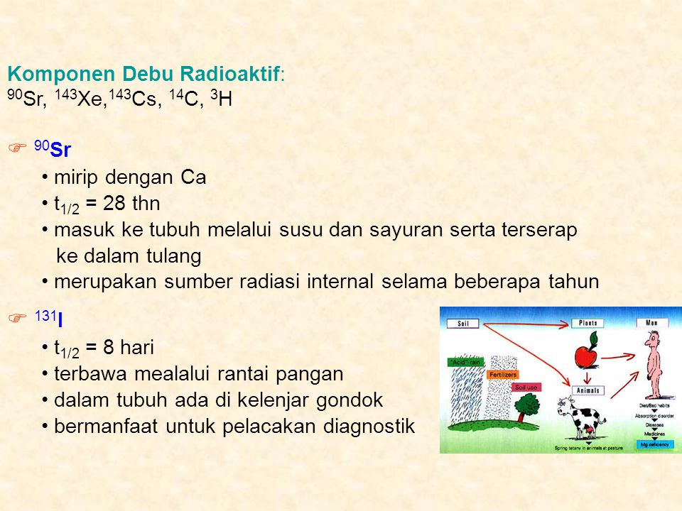  90Sr  131I Komponen Debu Radioaktif: 90Sr, 143Xe,143Cs, 14C, 3H