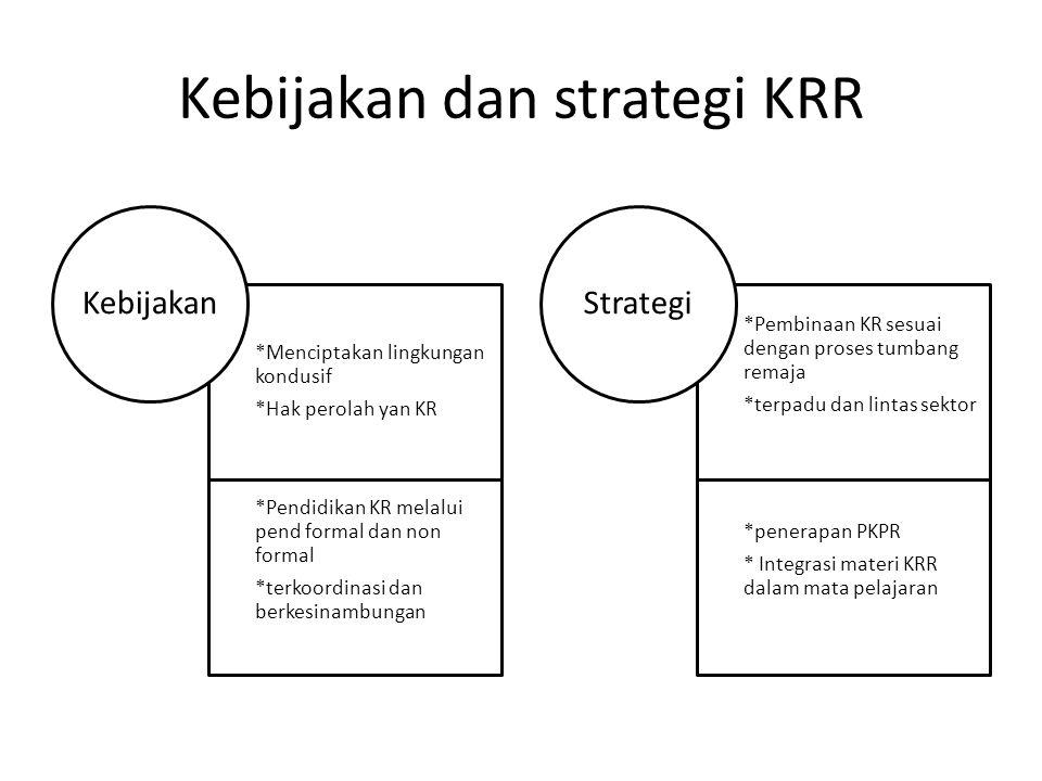 Kebijakan dan strategi KRR