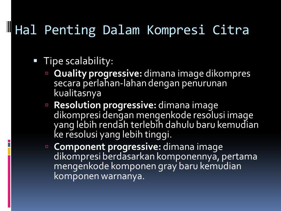 Hal Penting Dalam Kompresi Citra
