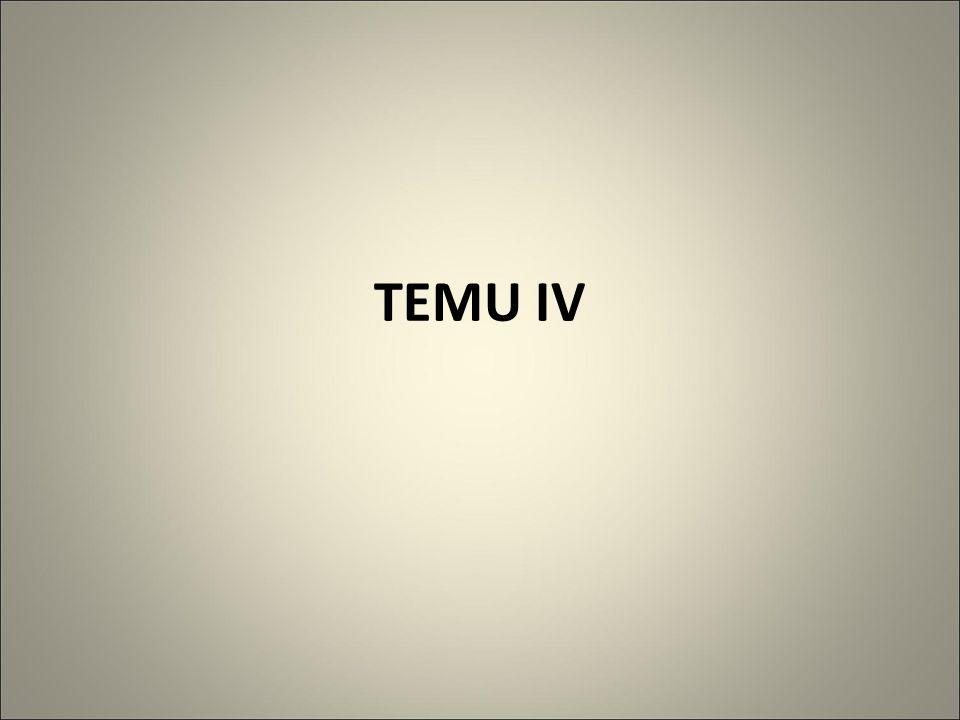 TEMU IV