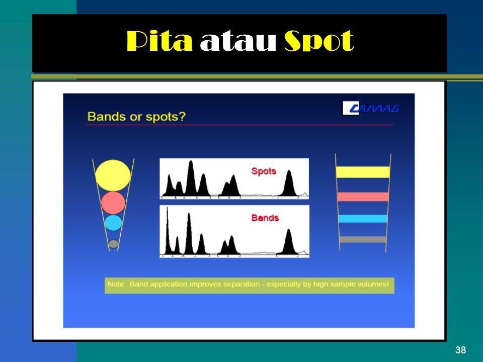 Pita atau Spot