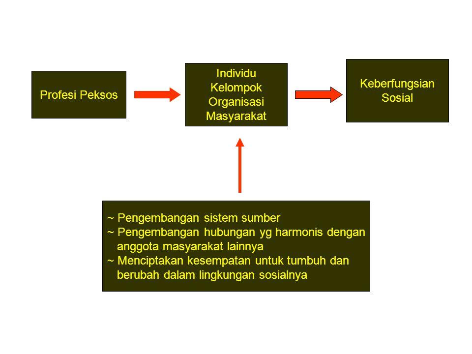 Keberfungsian Sosial. Individu. Kelompok. Organisasi. Masyarakat. Profesi Peksos. ~ Pengembangan sistem sumber.