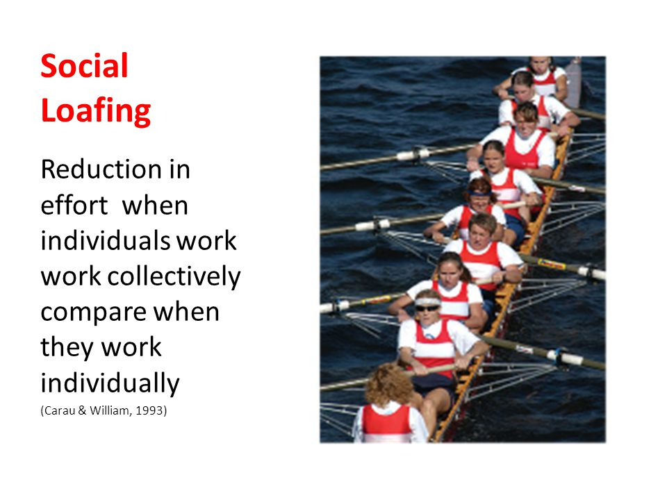 Social Loafing Reduction in effort when individuals work work collectively compare when they work individually.