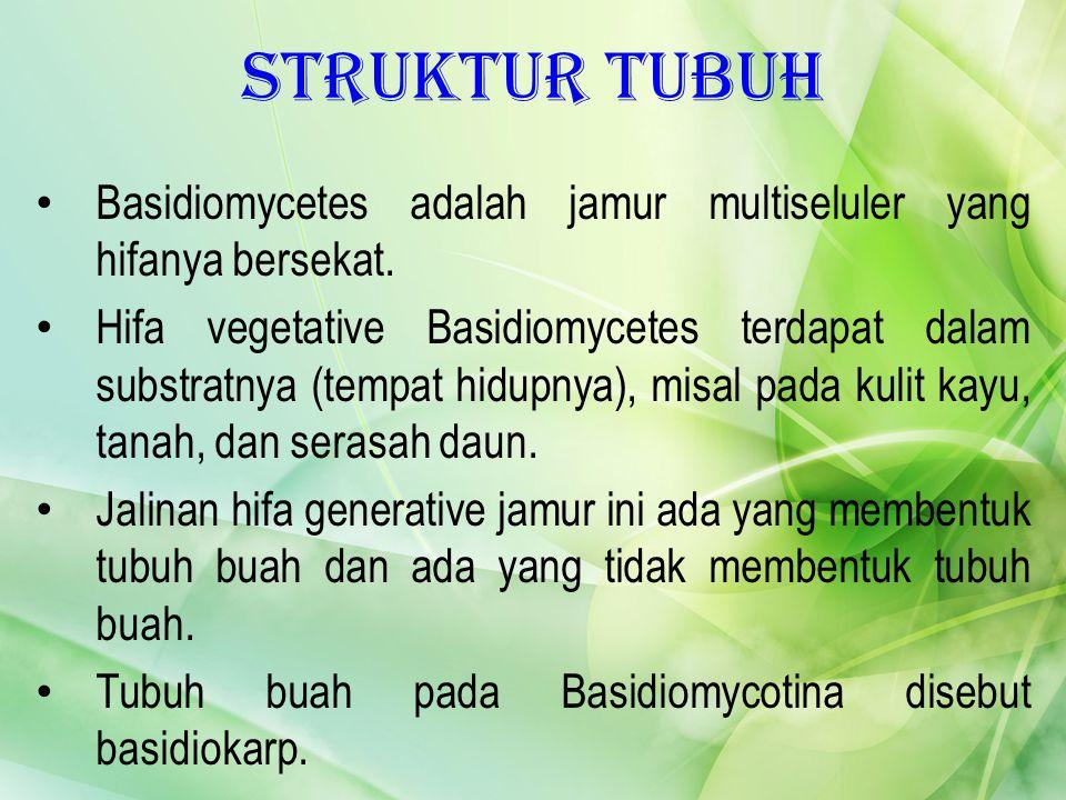 Struktur Tubuh Basidiomycetes adalah jamur multiseluler yang hifanya bersekat.