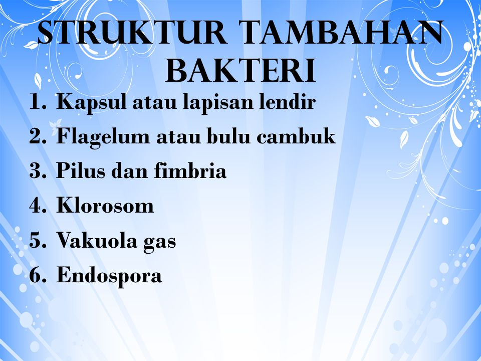 STRUKTUR TAMBAHAN BAKTERI