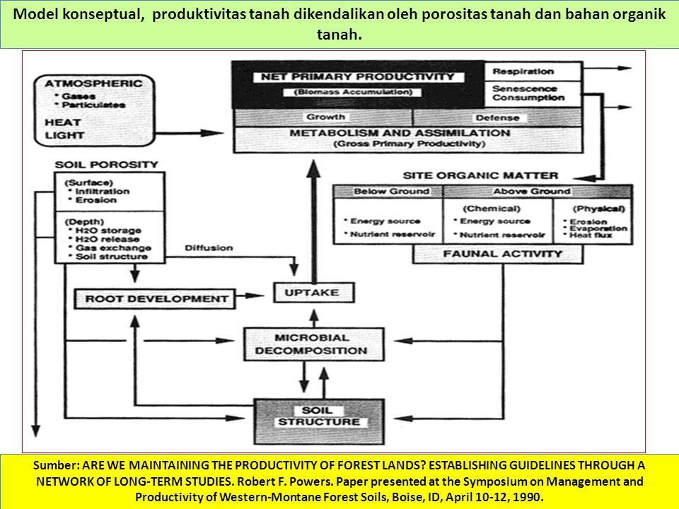 Model konseptual, produktivitas tanah dikendalikan oleh porositas tanah dan bahan organik tanah.