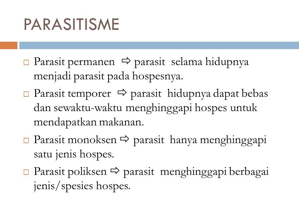PARASITISME Parasit permanen  parasit selama hidupnya menjadi parasit pada hospesnya.