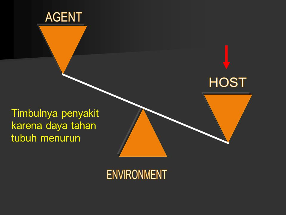 AGENT HOST ENVIRONMENT
