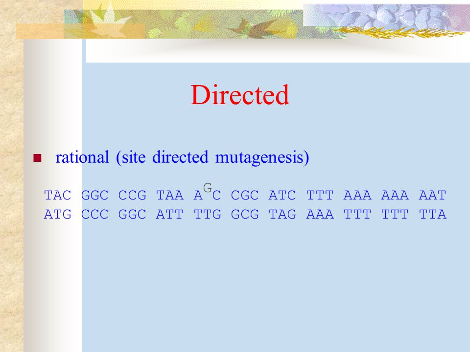 Directed rational (site directed mutagenesis) G