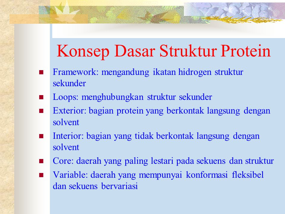 Konsep Dasar Struktur Protein
