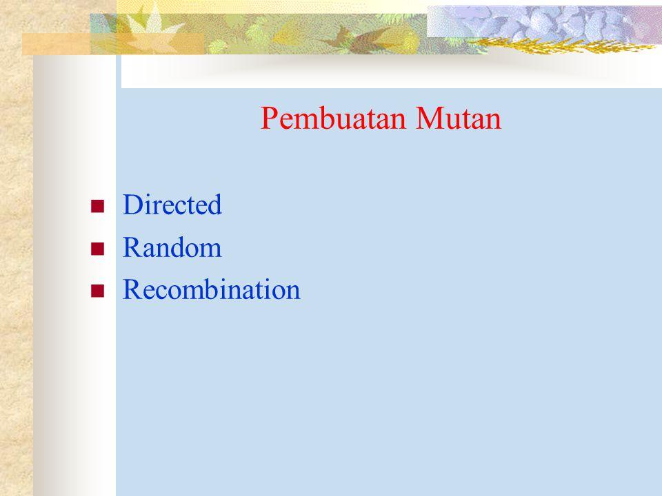 Pembuatan Mutan Directed Random Recombination
