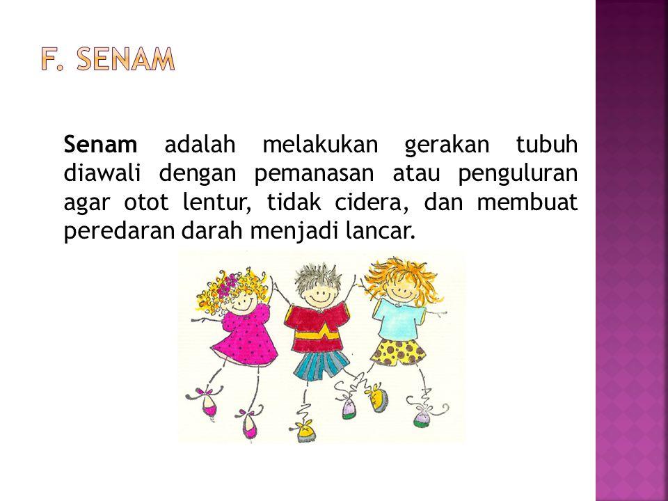 F. Senam