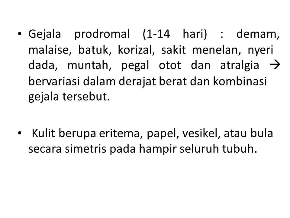 • Gejala prodromal (1-14 hari) : demam,