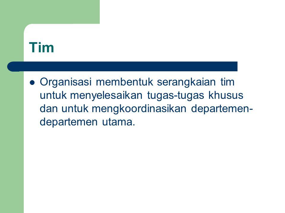 Tim Organisasi membentuk serangkaian tim untuk menyelesaikan tugas-tugas khusus dan untuk mengkoordinasikan departemen-departemen utama.