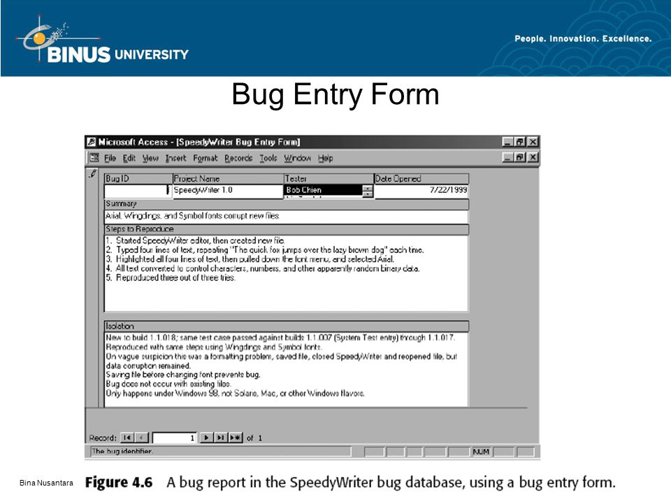 Bug Entry Form Bina Nusantara