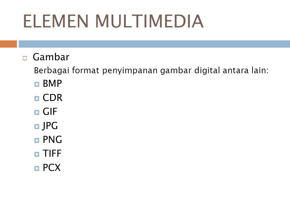 ELEMEN MULTIMEDIA Gambar BMP CDR GIF JPG PNG TIFF PCX