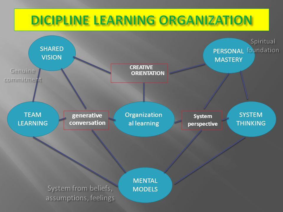 DICIPLINE LEARNING ORGANIZATION