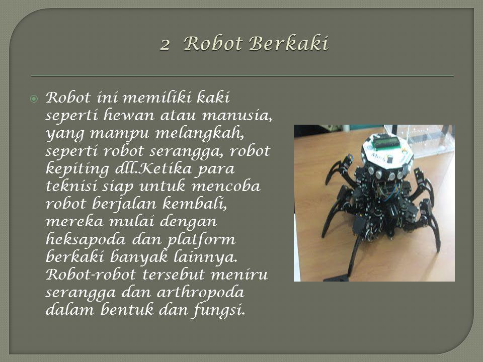 2 Robot Berkaki