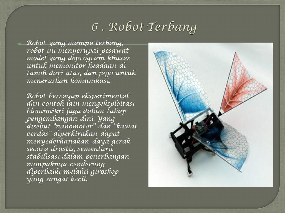 6 . Robot Terbang