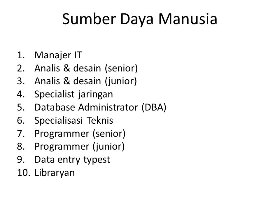 Sumber Daya Manusia Manajer IT Analis & desain (senior)