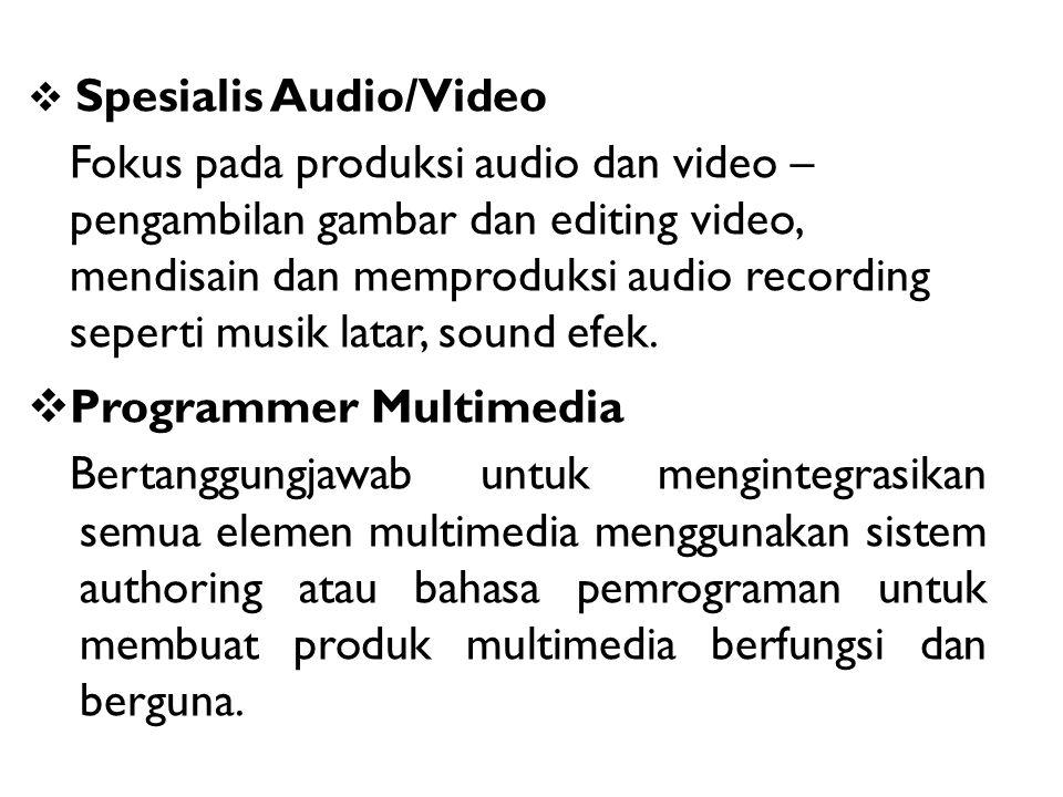 Programmer Multimedia