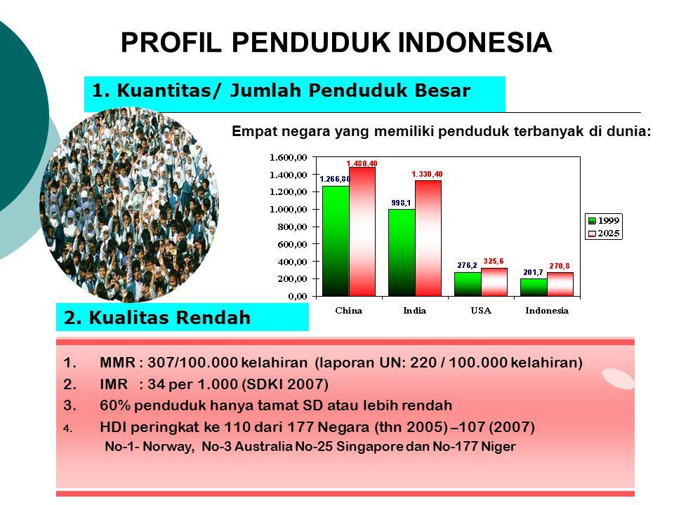 PROFIL PENDUDUK INDONESIA