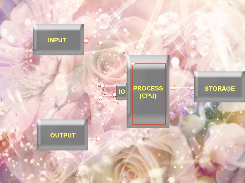 INPUT PROCESS (CPU) STORAGE IO OUTPUT