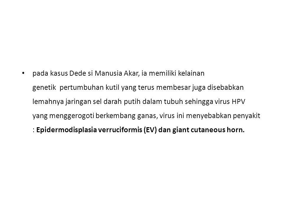 pada kasus Dede si Manusia Akar, ia memiliki kelainan genetik pertumbuhan kutil yang terus membesar juga disebabkan lemahnya jaringan sel darah putih dalam tubuh sehingga virus HPV yang menggerogoti berkembang ganas, virus ini menyebabkan penyakit : Epidermodisplasia verruciformis (EV) dan giant cutaneous horn.
