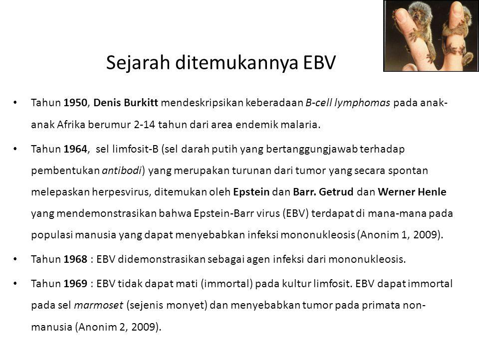 Sejarah ditemukannya EBV