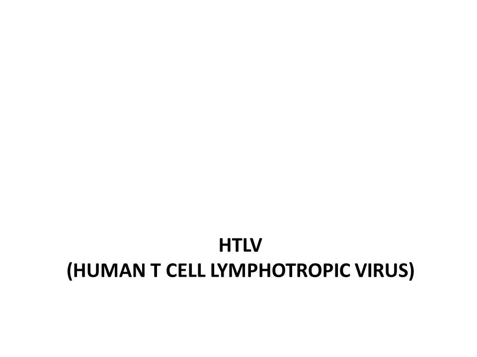 HTLV (Human T cell lymphotropic virus)
