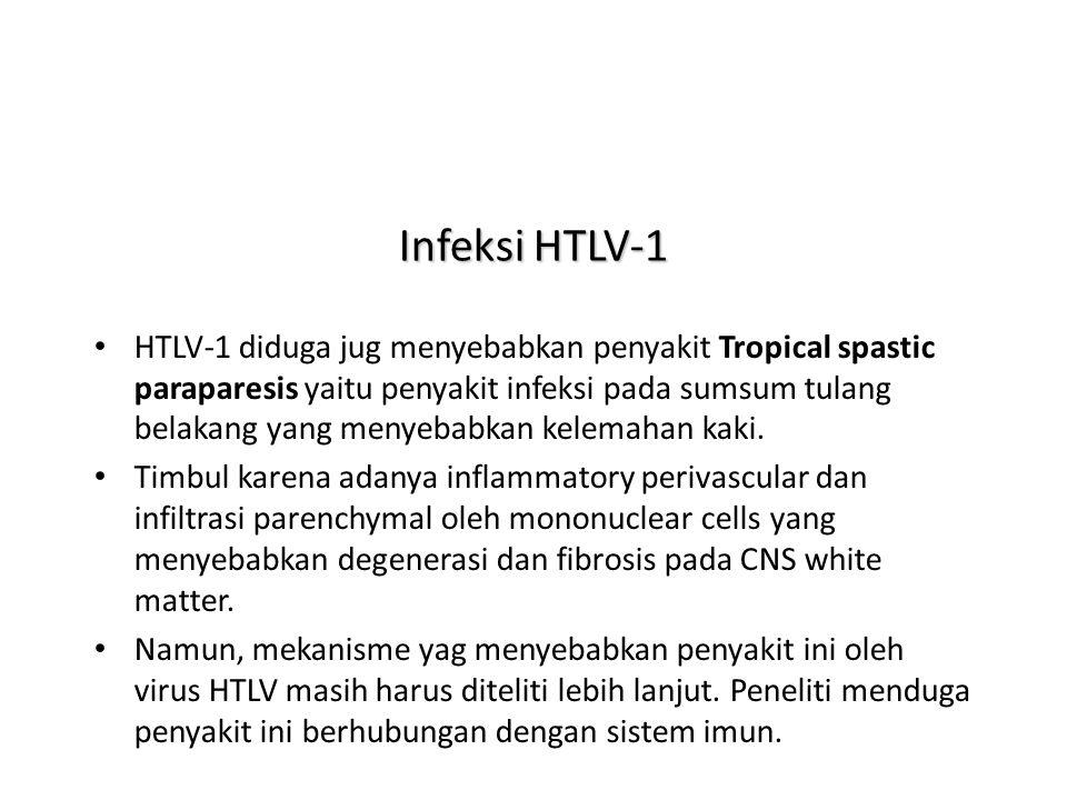 Infeksi HTLV-1
