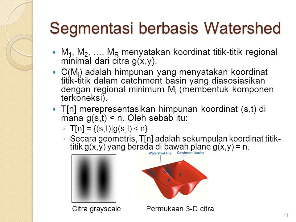 Segmentasi berbasis Watershed
