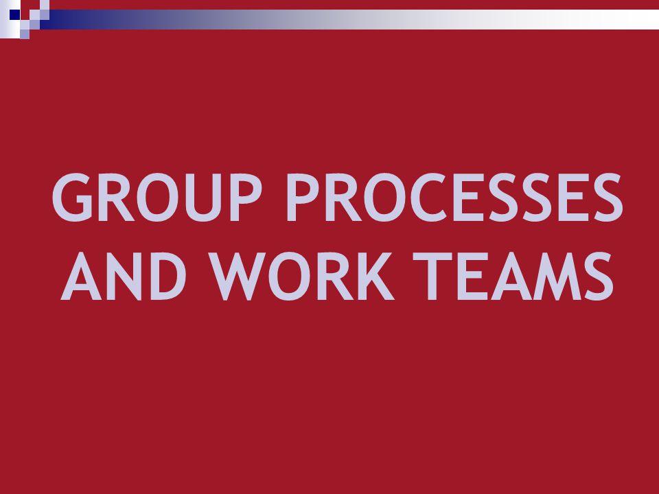GROUP PROCESSES AND WORK TEAMS