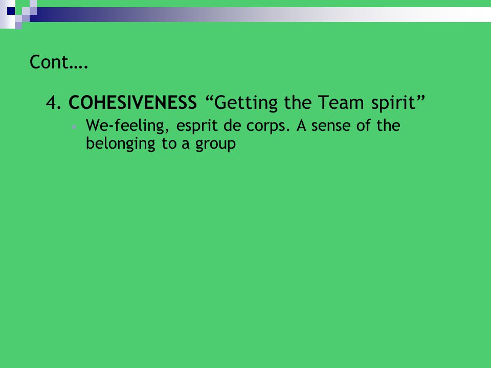 4. COHESIVENESS Getting the Team spirit