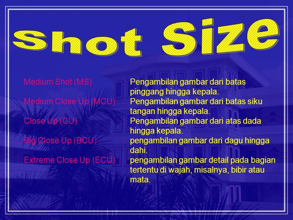 Shot Size