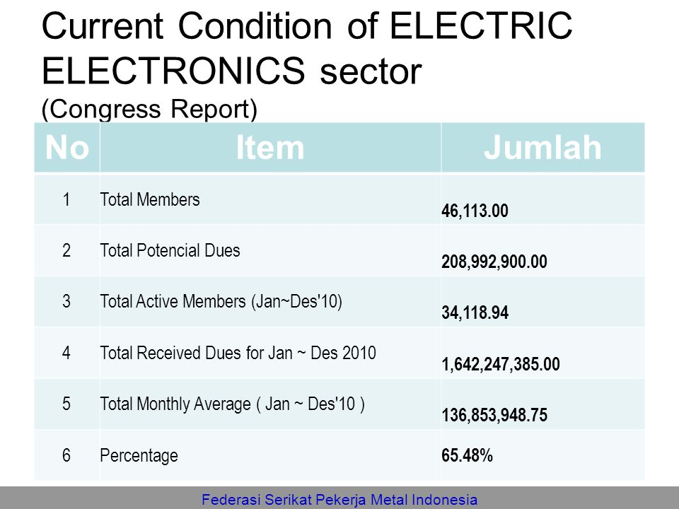 Current Condition of ELECTRIC ELECTRONICS sector (Congress Report)