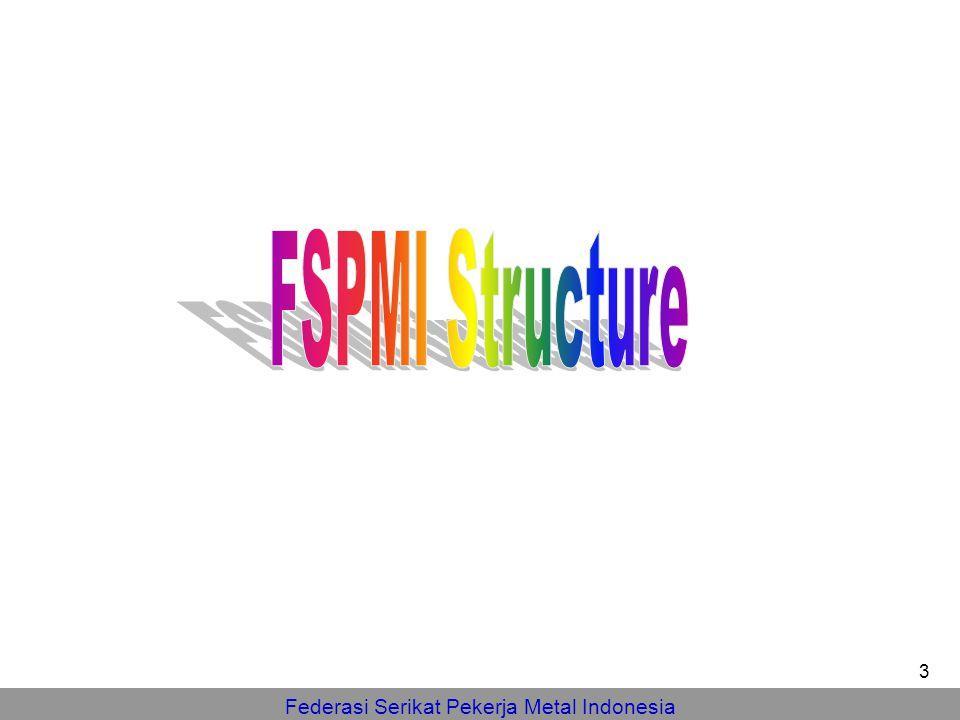 FSPMI Structure