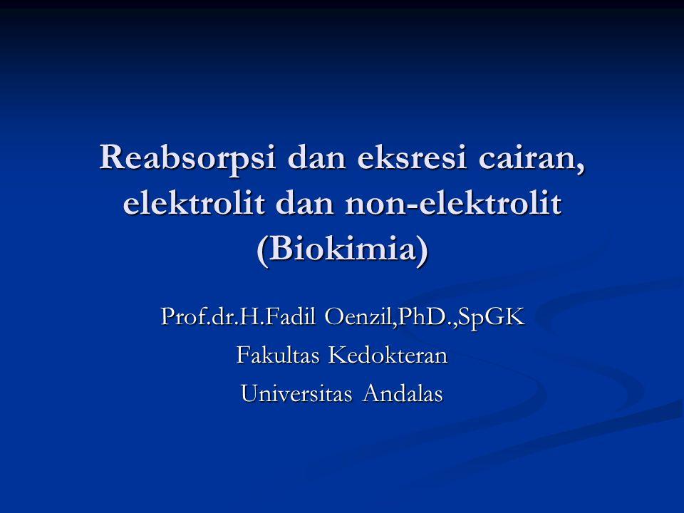 Prof.dr.H.Fadil Oenzil,PhD.,SpGK