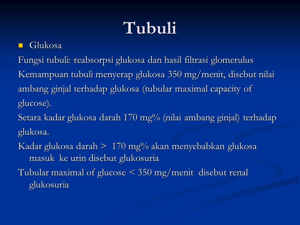 Tubuli Glukosa. Fungsi tubuli: reabsorpsi glukosa dan hasil filtrasi glomerulus. Kemampuan tubuli menyerap glukosa 350 mg/menit, disebut nilai.