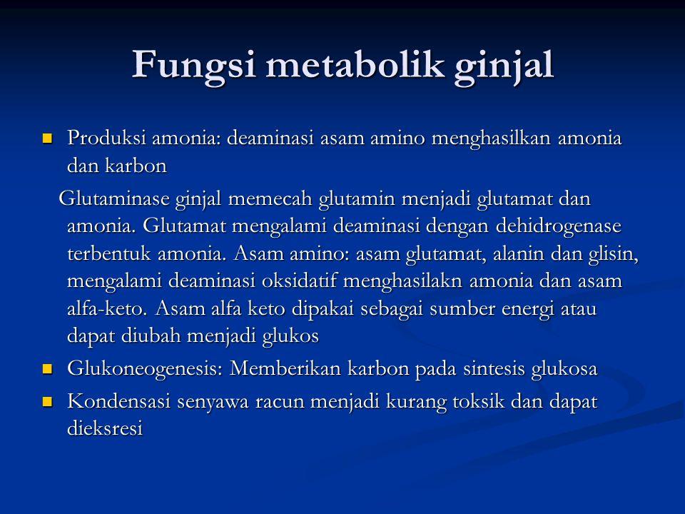 Fungsi metabolik ginjal