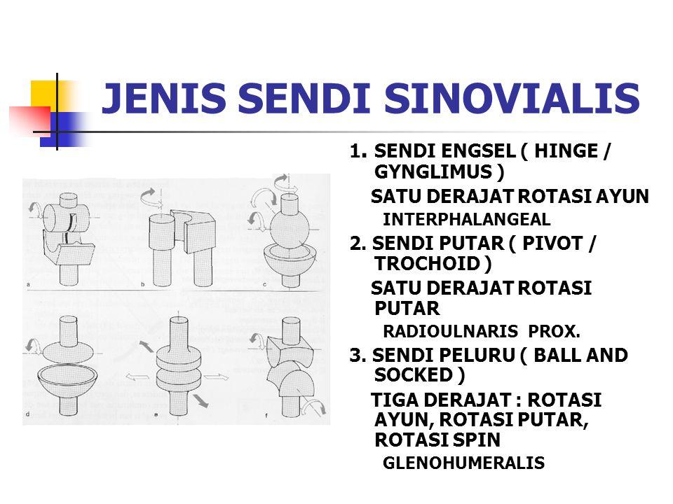 JENIS SENDI SINOVIALIS