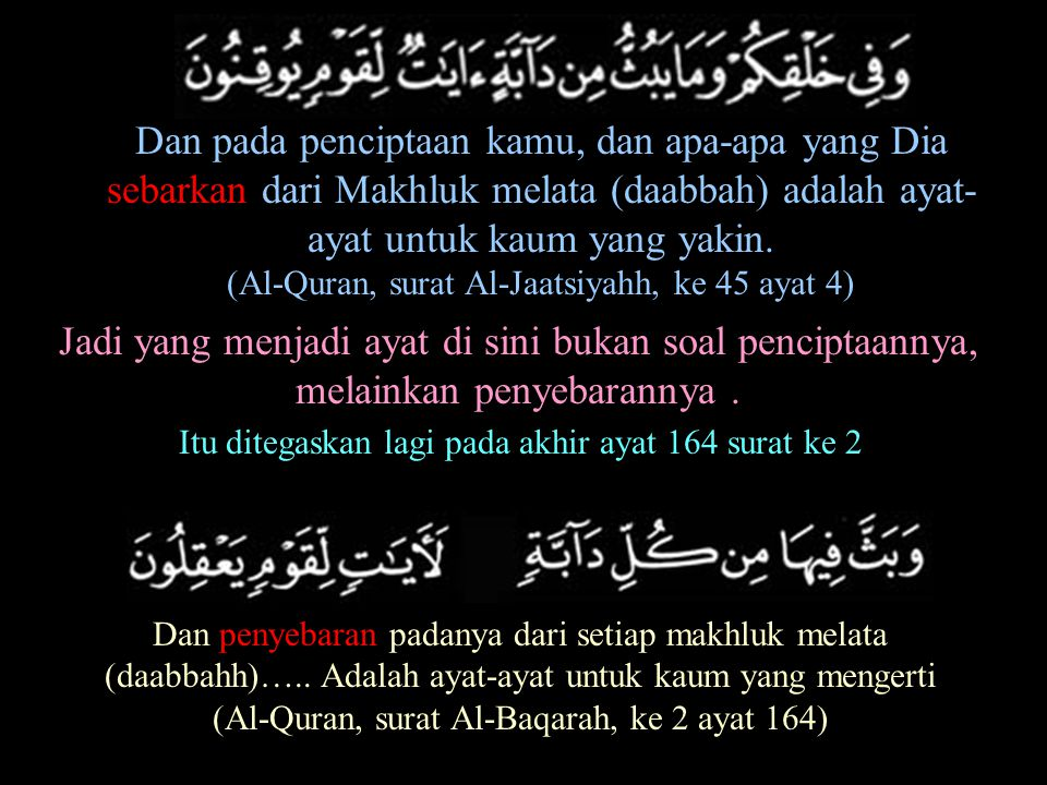 Dan pada penciptaan kamu, dan apa-apa yang Dia sebarkan dari Makhluk melata (daabbah) adalah ayat-ayat untuk kaum yang yakin.