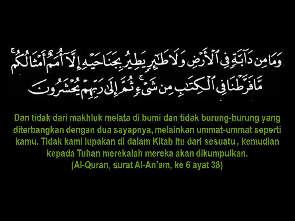 (Al-Quran, surat Al-An'am, ke 6 ayat 38)
