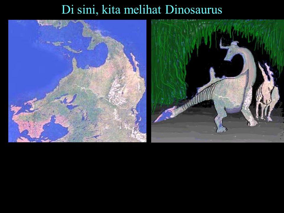 Di sini, kita melihat Dinosaurus