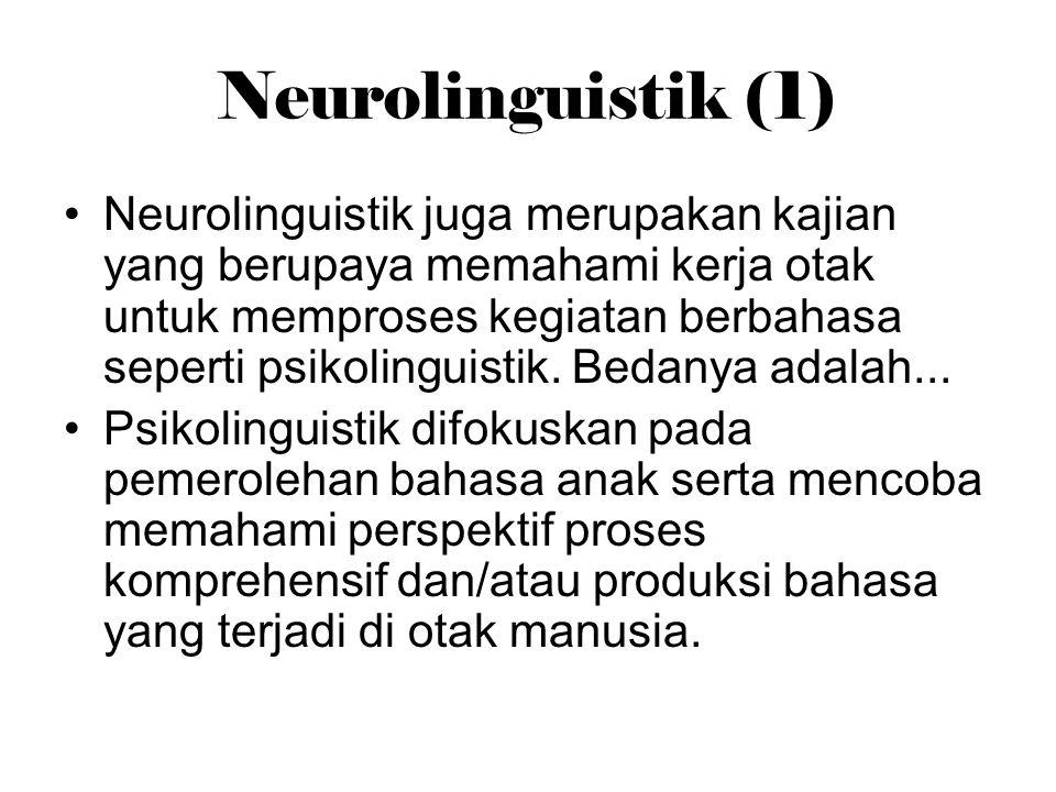 Neurolinguistik (1)