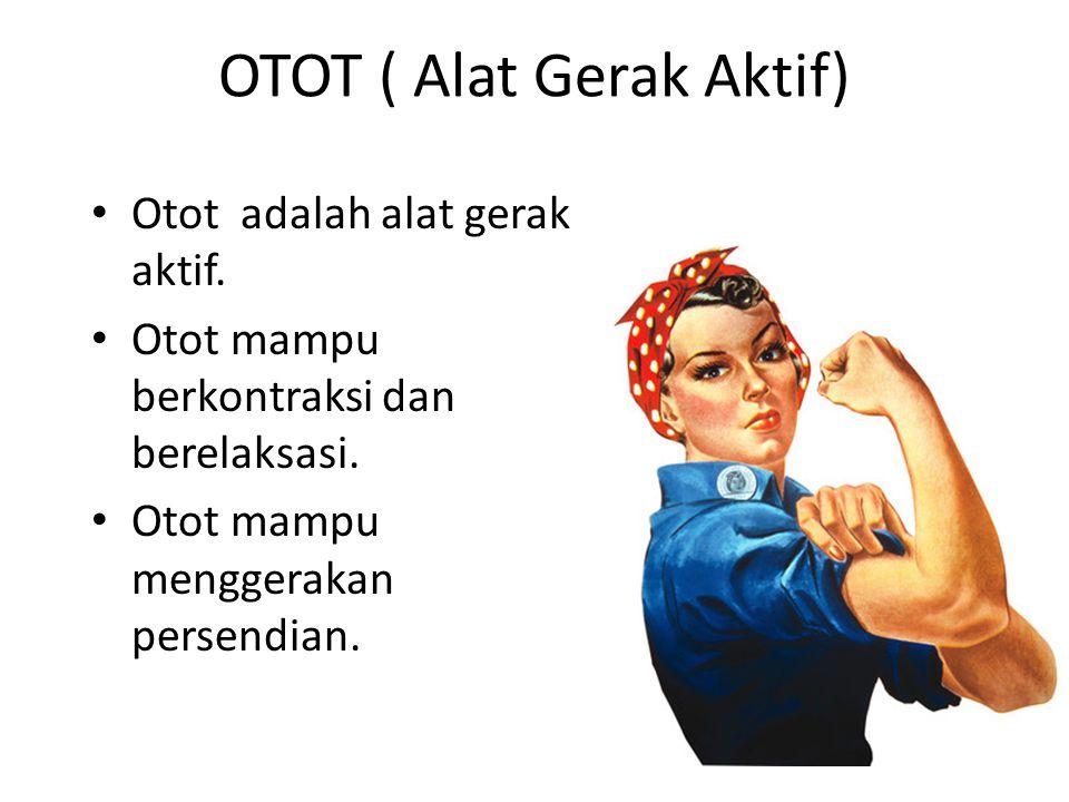 OTOT ( Alat Gerak Aktif)