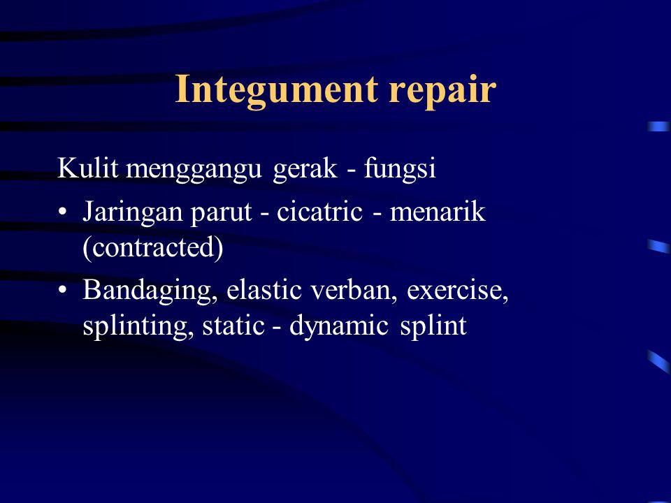 Integument repair Kulit menggangu gerak - fungsi