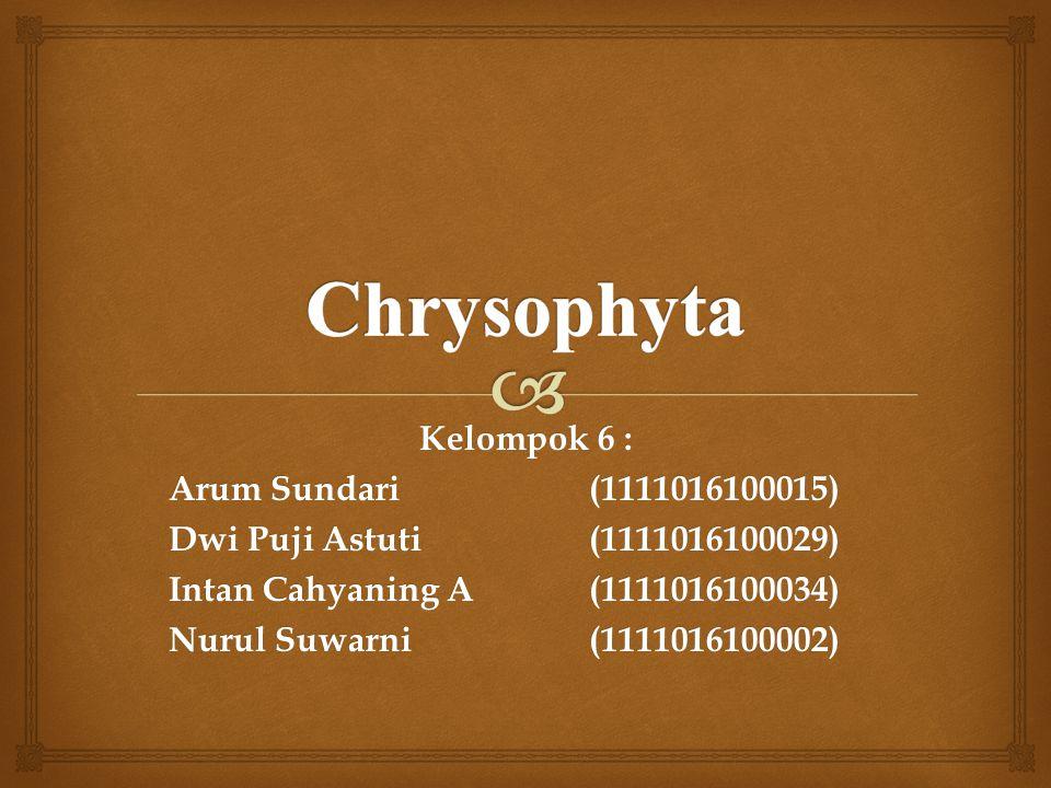 Chrysophyta Kelompok 6 : Arum Sundari (1111016100015)