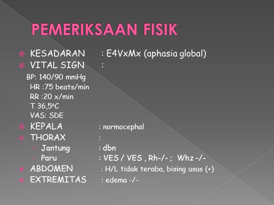 PEMERIKSAAN FISIK KESADARAN : E4VxMx (aphasia global) VITAL SIGN :